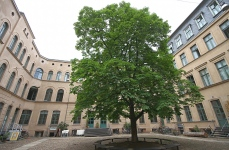 courtyard, Berlin Mitte, Berlin, center